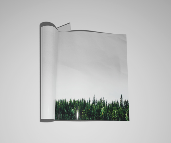 sustainability of print