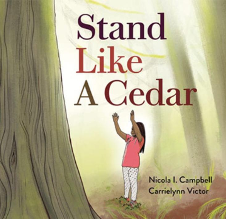 Stand Like a Cedar book cover